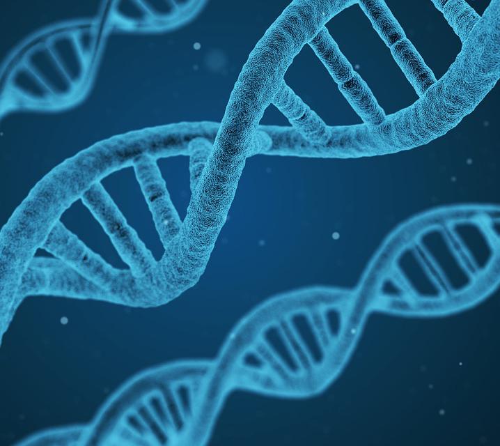 基因治療與阿德里安·伯德教授
